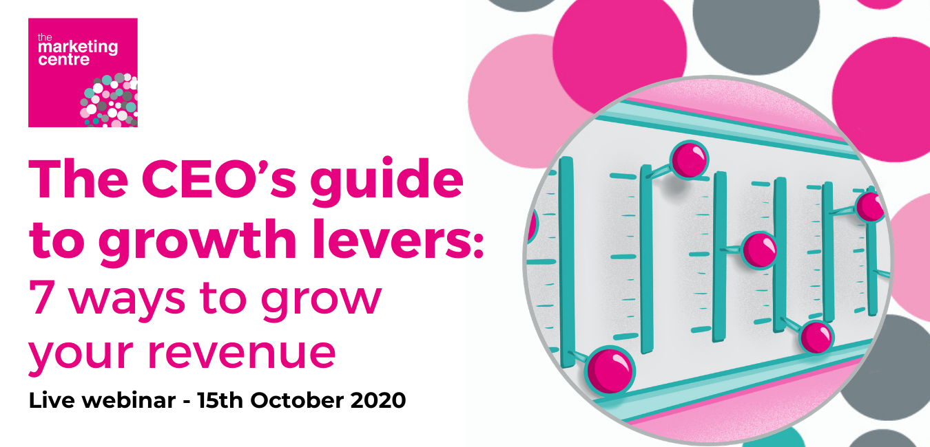 CEOs GUIDE TO GROWTH LEVERS FINAL(1)
